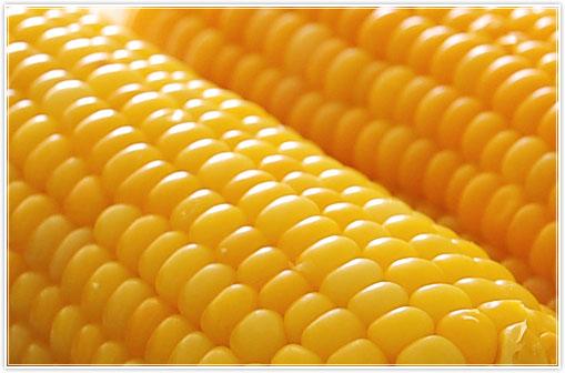 corncob.jpg