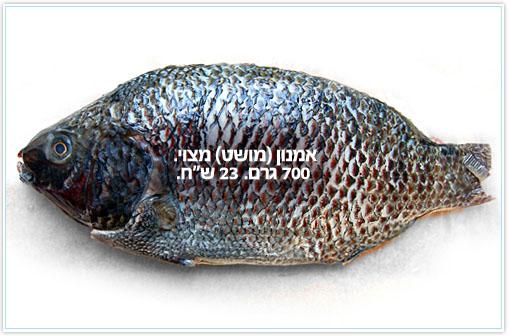 roast-fish9.jpg