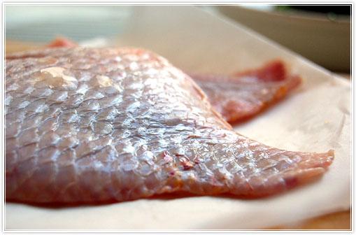 fishsalsa11.jpg