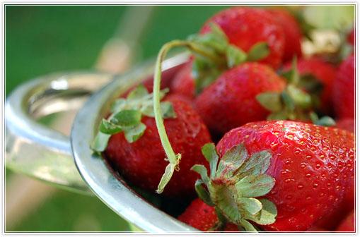 strawberrymouse1.jpg