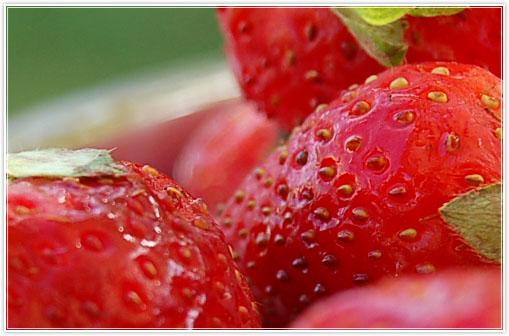 strawberrymouse2.jpg