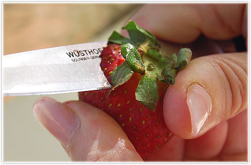 strawberrymouse3.jpg