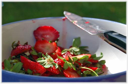 strawberrymouse4.jpg