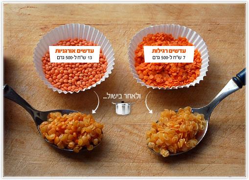 coleslaw-lentils18.jpg